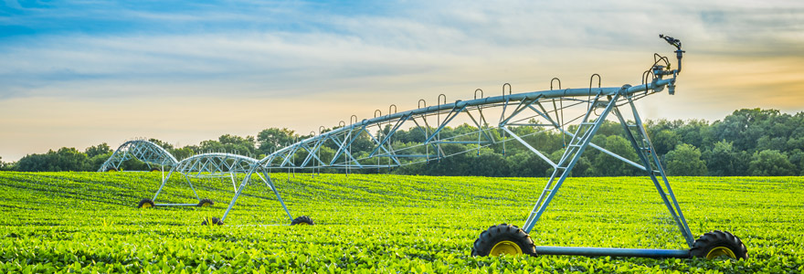 Pivots d'irrigation